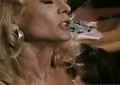 Nina Hartley Hammer away Mating..